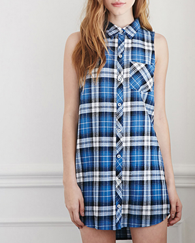 Blue and White Checked Flannel Shirt Dress