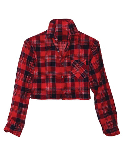 Button Up Street Wear Flannel Crop Top